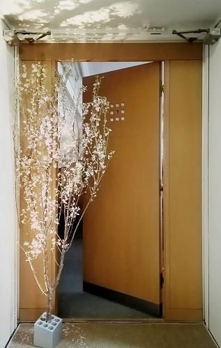 事務所玄関3 - コピー.jpg