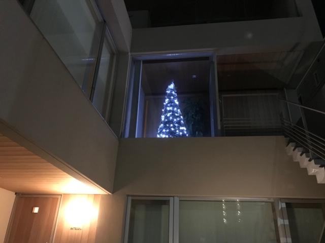 クリスマスツリー(内観)